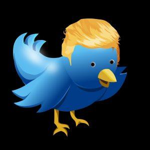 E' giusto ridare l'account a Trump?